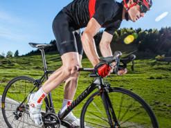 Bicicletas Modelos 2016 Wilier Carretera