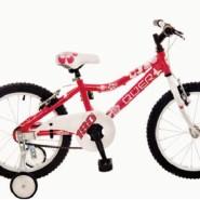Bicicletas Modelos 2012 QÜER 18