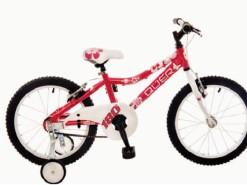 Bicicletas Modelos 2012 QÜER 18″