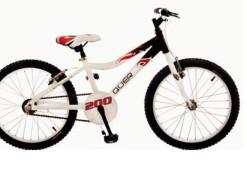 Bicicletas Modelos 2012 QÜER 20″