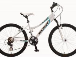 Bicicletas Modelos 2012 QÜER AL650 24″ chica