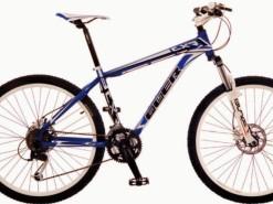 Bicicletas Modelos 2012 QÜER CXR 1