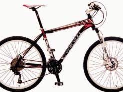 Bicicletas Modelos 2012 QÜER CXR 2