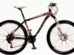Bicicletas Modelos 2012 QÜER CXR 29er