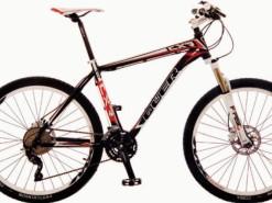 Bicicletas Modelos 2012 QÜER CXR 4