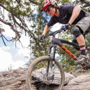Bicicletas Modelos 2016 Felt MTB Decree 27.5