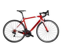 Servicios tienda Alquiler bicicletas Bicicleta Carretera Carbono