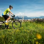 Bicicletas Modelos 2016 Ghost MTB Rígidas Tacana 29