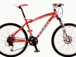 Bicicletas Modelos 2012 QÜER Peak 1