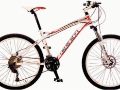 Bicicletas Modelos 2012 QÜER Peak 2