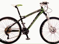 Bicicletas Modelos 2012 QÜER Peak 4