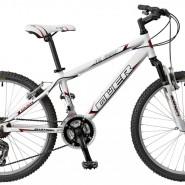 "Bicicletas Modelos 2013 QÜER AL 650 24"" Niño"