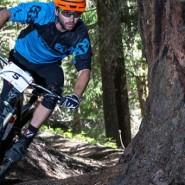 Bicicletas Modelos 2016 Felt MTB TRAIL 29