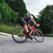 Bicicletas Modelos 2019 Wilier Carretera